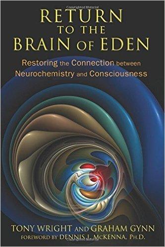 return-to-the-brain-of-eden