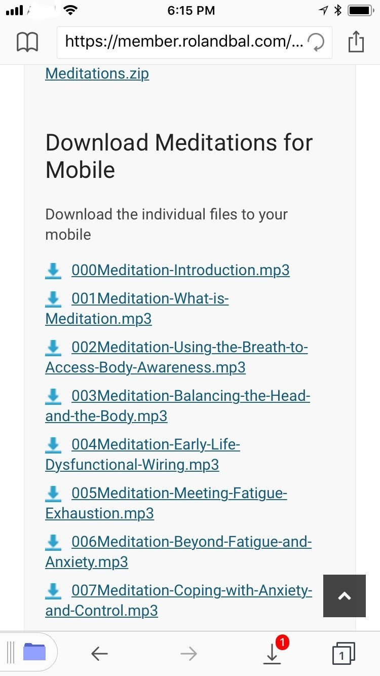 meditations on documents 6 browser